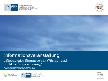 PDF: 589,2 KB - Exportinitiative Erneuerbare Energien - BMWi