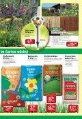 Vielfalt im Garten - Seite 3