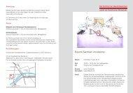 Kursausschreibung - Solothurner Handelskammer