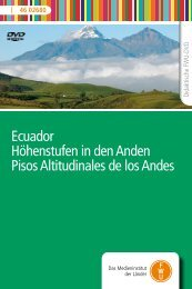 Ecuador Höhenstufen in den Anden Pisos Altitudinales de los ... - FWU