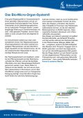 Schwimmteiche & Naturpools - Kittenberger Erlebnisgärten - Seite 4