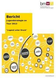Workshops Jugend unter Druck - Ergebnisse (2013) (PDF, 302kB)