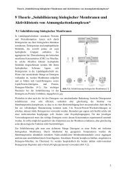 """9 Theorie """"Solubilisierung biologischer Membranen und ..."""