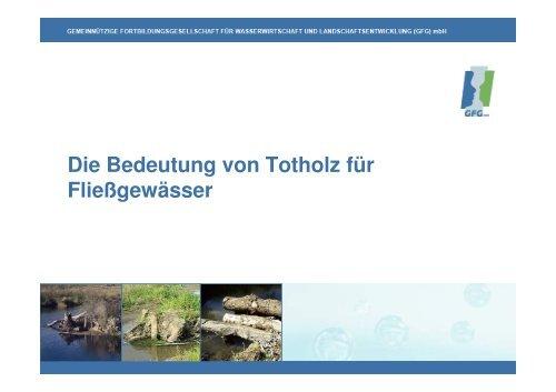 Vortrag zu Totholz in Fließgewässern   PDF 26 MB - GfG