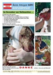 Eine Information über den Einsatz im November ... - Hundewelt.at