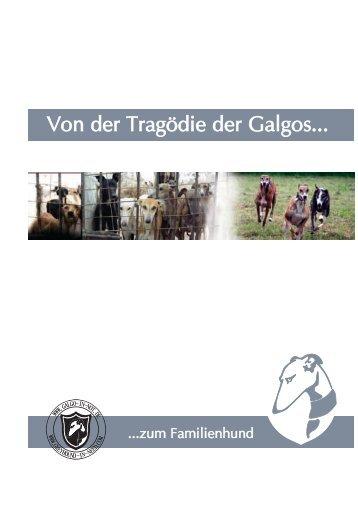 Von der Tragödie der Galgos... - Hundewelt.at