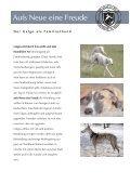Von der Tragödie der Galgos... - Hundewelt.at - Seite 5