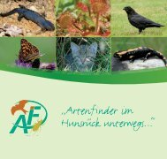 Broschüre Artenfinder im Hunsrück unterwegs - Naturpark Saar ...