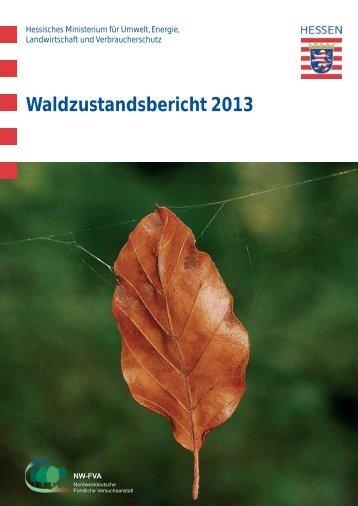 Waldzustandsbericht 2013 ( PDF / 14 MB ) - Hessen