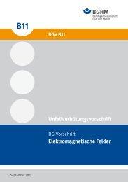Elektromagnetische Felder Unfallverhütungsvorschrift