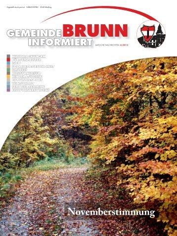 Gemeindezeitung 8/2013 - Brunn am Gebirge