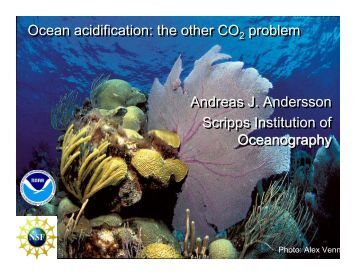 Ocean Acidification: The Other CO2 Problem
