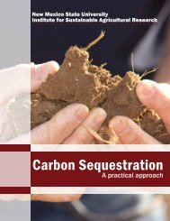 Carbon Sequestration - New Mexico State University