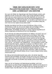 Über die geologischen und paläontologischen Verhältnisse der ...