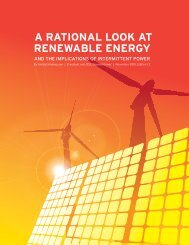 A RATIONAL LOOK AT RENEWABLE ENERGY - Wind Watch