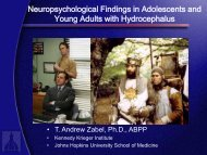 Neuropsychological Findings in Adolescents and Young Adults with ...