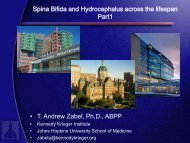 Spina bifida and hydrocephalus across the lifespan: Part I