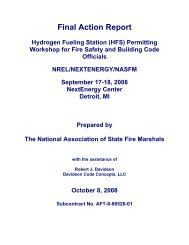 Final Action Report - DOE Hydrogen and Fuel Cells Program Home ...