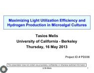 Maximizing Light Utilization Efficiency and Hydrogen Production in ...