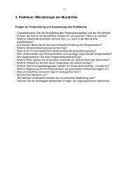 6. Praktikum Medizinische Mikrobiologie