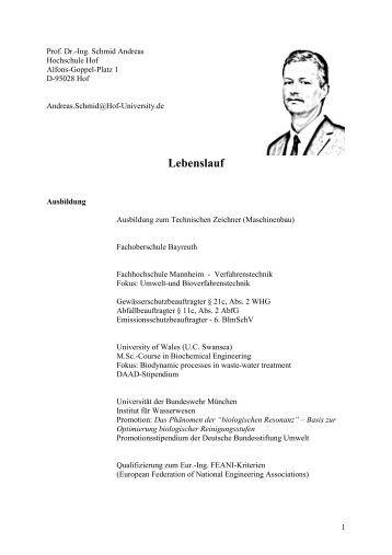 Atemberaubend Probe Lebenslauf Für Erfahrene Assistant Professor In ...