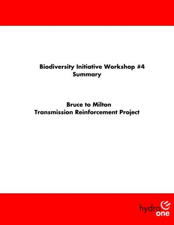 Biodiversity Workshop #4 Summary Report.doc - Hydro One