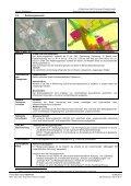 4. ÄnderungFNP Erläuterung 18.06.2013 - Stadt Germering - Page 5