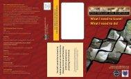 (bird) Flu Brochure - International Association of Fire Chiefs