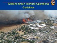 Tactical Standards of Operations in the WUI