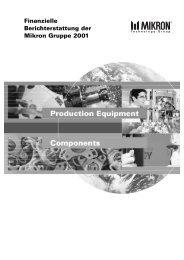 Finanzielle Berichterstattung der Mikron Gruppe 2001