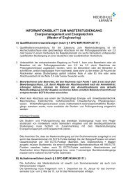 Informationsblatt zum Masterstudiengang - Hochschule Ansbach