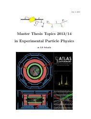 Master Thesis Topics 2013/14 in Experimental Particle Physics