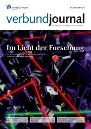 95/2013 - Forschungsverbund Berlin