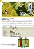 Folder Weinbau - Seite 4