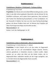 Alle Projekte 2013 - Bertha-von-Suttner-Gymnasium