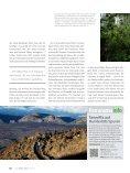 Vulkanwandern auf Teneriffa - Seite 3