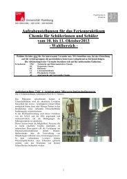 Aufgabenstellungen für das Ferienpraktikum Chemie für ...