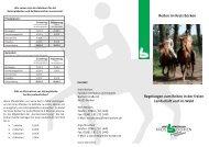 Flyer Reitkennzeichen_2013.indd - in der Gemeinde Heiden