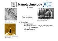 Nanowires - IAP/TU Wien