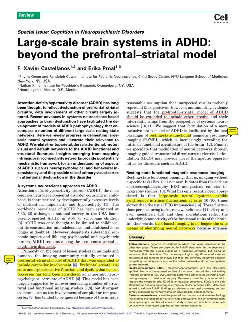Large-scale brain systems in ADHD - Institute for Applied
