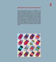 Mechanisms of tumour development - IARC