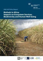 Biofuels in Africa - UNU-IAS - United Nations University