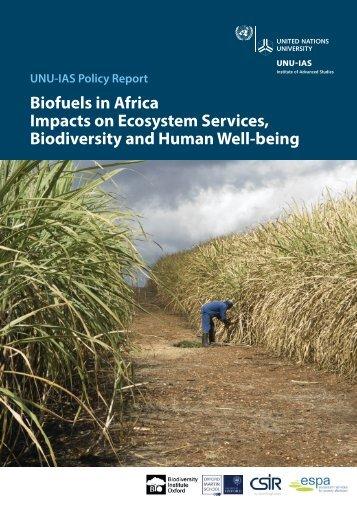 Biofuels in Africa - UNU-IAS - United Nations University