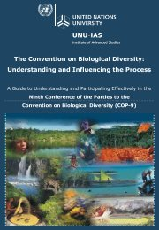 Understanding and Influencing the Process - UNU-IAS - United ...