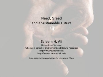 Treasures of the Earth: Need, Greed and a Sustainable ... - UNU-IAS