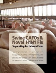 Swine CAFOs & Novel H1N1 Flu - Institute for Agriculture and Trade ...
