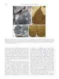 Further contribution to the low latitude leaf assemblage from the late ... - Page 4