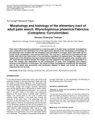 Morphology and histology of the alimentary tract of adult palm weevil ...