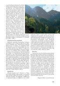 Obuwik pospolity - Page 3