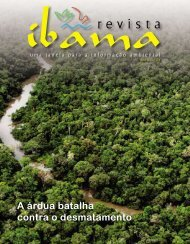 Revista do Ibama Ano II-nº4